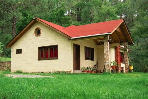 Loshia tunni cabin for added privacy and comfort.