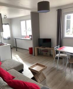 Appartement,centré Lourdes/Pau/Tarbes,animaux WIFI
