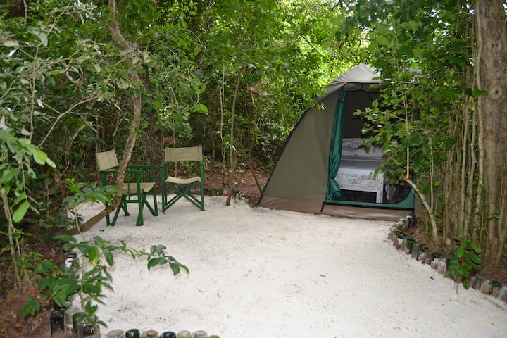 Camping in Watamu, Bamba Kofi 4, Beachfront Forest