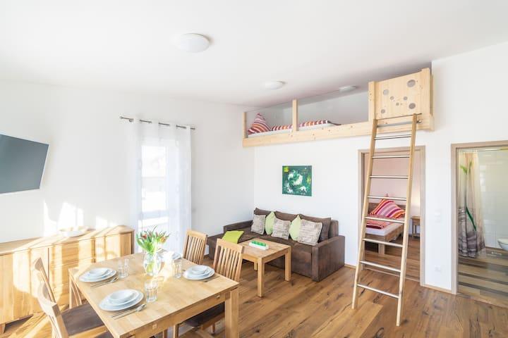 Apartment Evening Sun