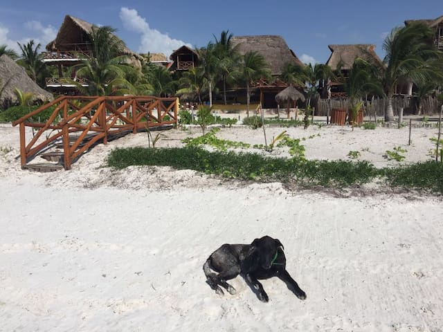 Enjoy & Relax: Cozy beachfront rooms in paradise 1 - Holbox - Chatka