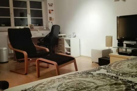 Geräumige Wohnung mit top Anbindung - Mannheim - Daire