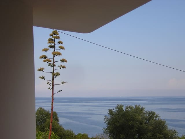 salento house looking the lovely blue sea - Tricase - Hus