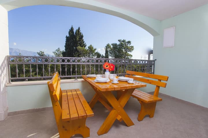 One bedroom apartment with terrace and sea view Sumartin, Brač (A-17267-d)