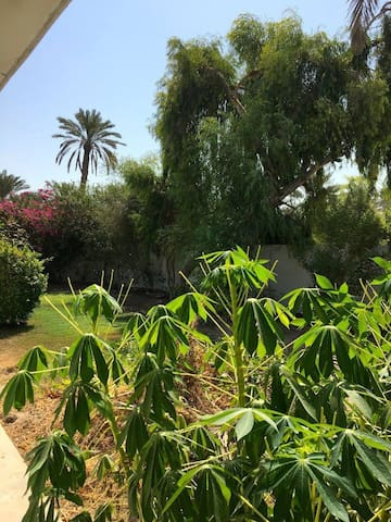 Self-Contained Studio Apartment in Lush Garden - Manama