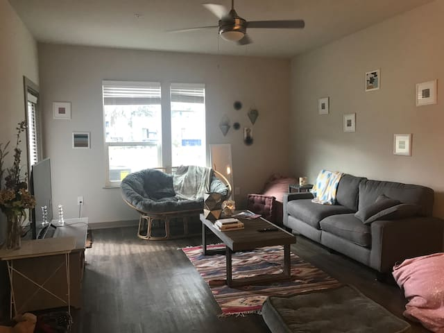 Large Sunny Apartment Perfect for St. Patricks!