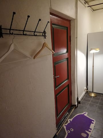The entrance, it's a corridor that leads to the bathroom and the laundry room. The door we see leads to the appartment.
