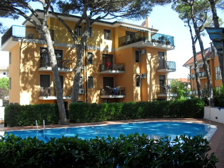condominio Elite  appartam 2 camere 5 max 6 person