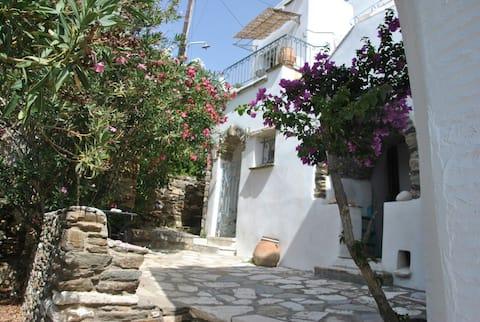 Pyrgos, Ancienne maison de charme Σπίτι στον Πύργο