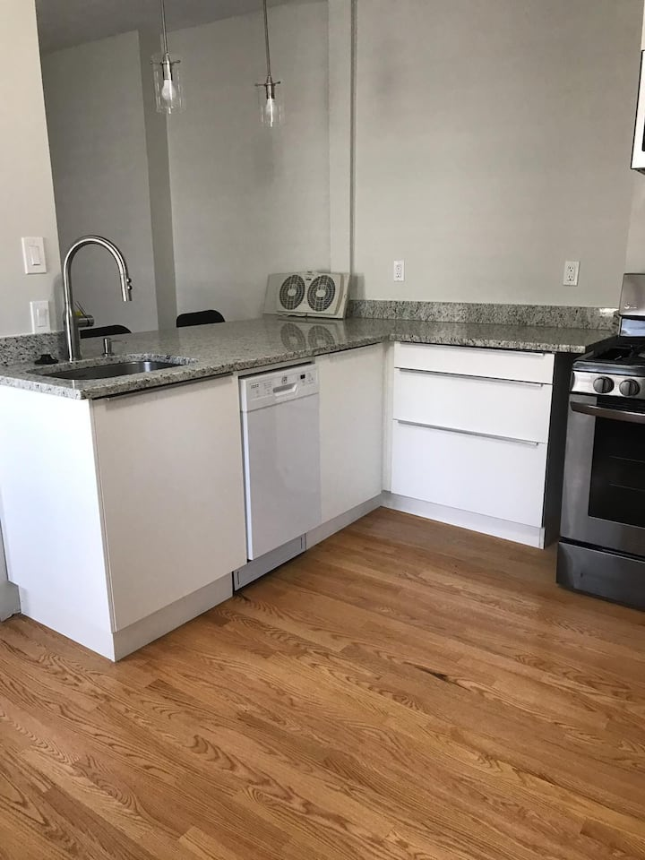Renovated 3 BR - 10 Min from Boston City CTR