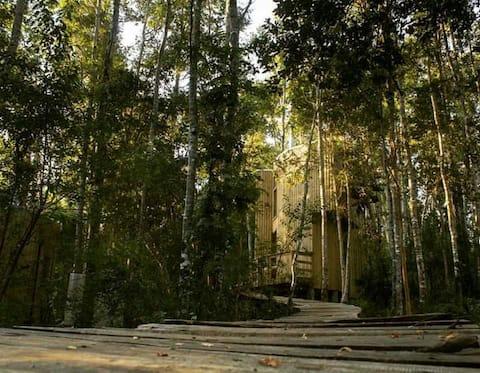Nidales Parque Reussland Lodge de Naturaleza
