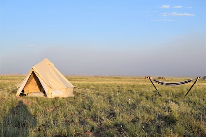 Starlight Tent Near Petrified Forest