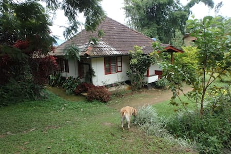 Enchanting Cottage in The Nilgiris