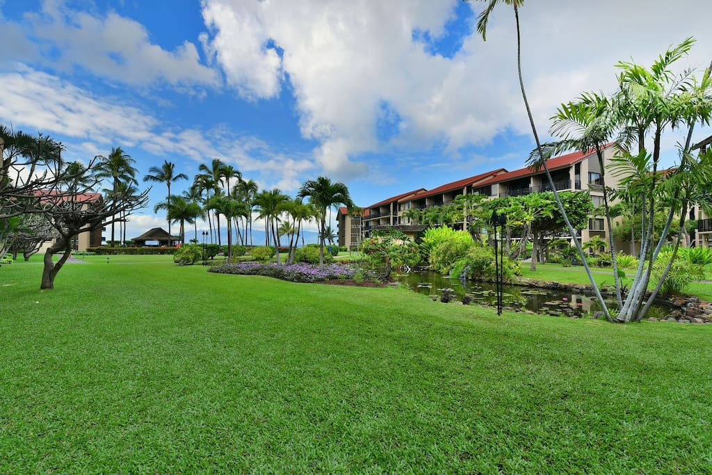 Gorgeous tropical landscaped grounds