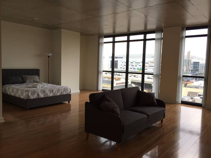 Spacious Apartment in Downtown!