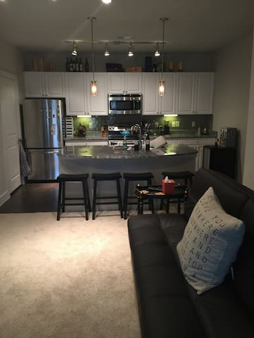 Luxury apt close to Lake Travis and Downtown - Austin - Pis