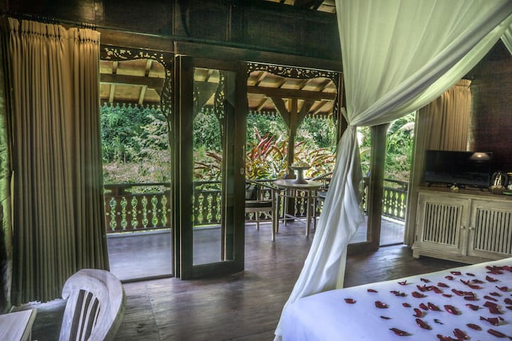 1 BR Wooden Deluxe Jungle View Villa
