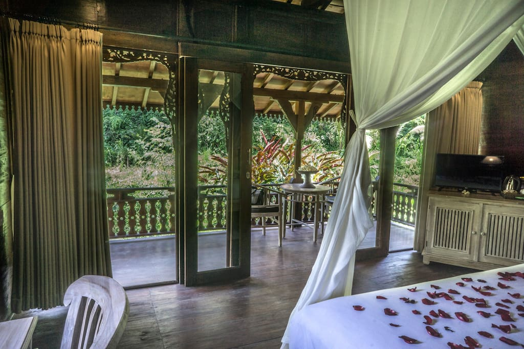 awaken in the morning with this enchanting jungle view