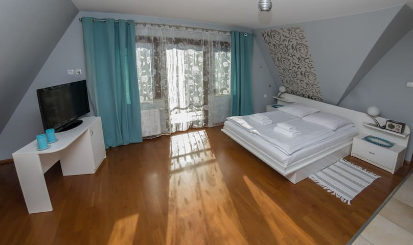 Silver Apartment Willa Gardenia Zakopane - Zakopane - Appartement