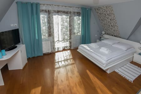 Silver Apartment Willa Gardenia Zakopane - Zakopane - Apartemen