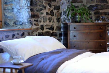 Beau et grand studio confortable - Ville de Québec - Daire