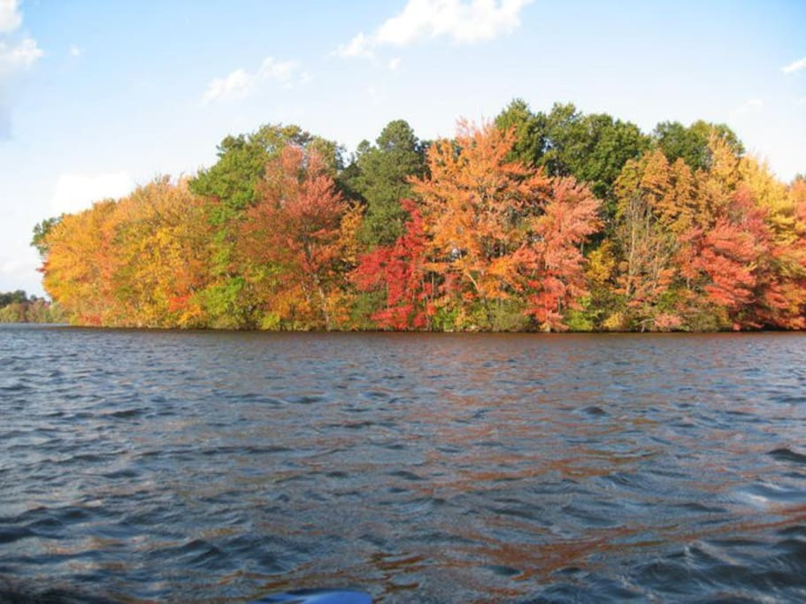 Great retreat! Use our kayak & go fishing, or sit by the outdoor fire