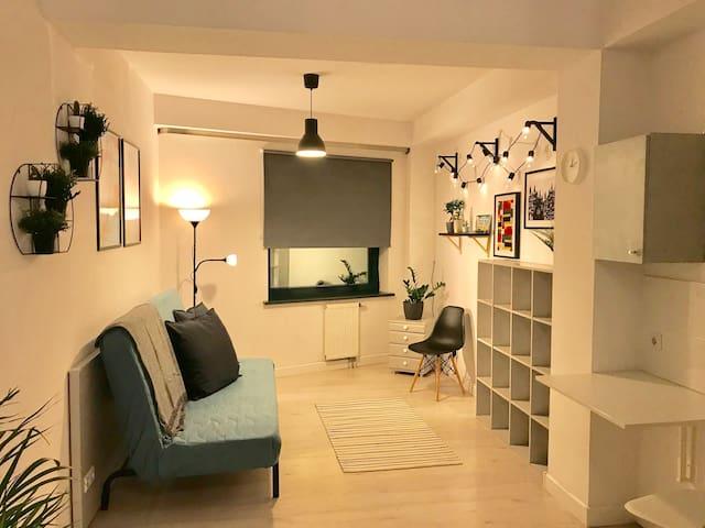 Charming Art&Plant Modern Studio OldTown - 2min