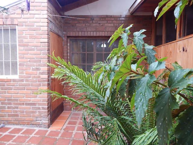 Tropische Grüne Ecke