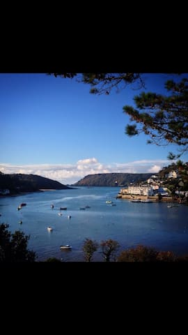 Beautiful apartment on the seafront - Salcombe - Daire