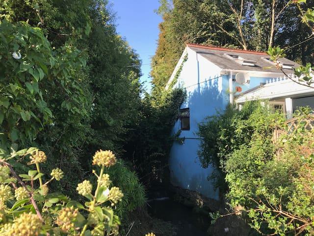 Bluebell River Cottage - Tamar Valley