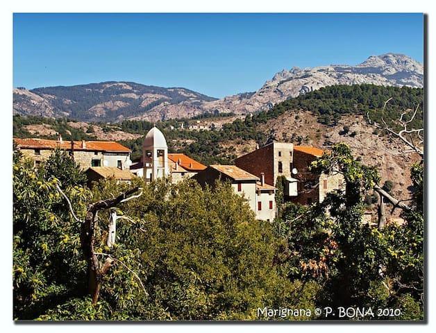 Loue maison - Village Corse - Marignana - Dom