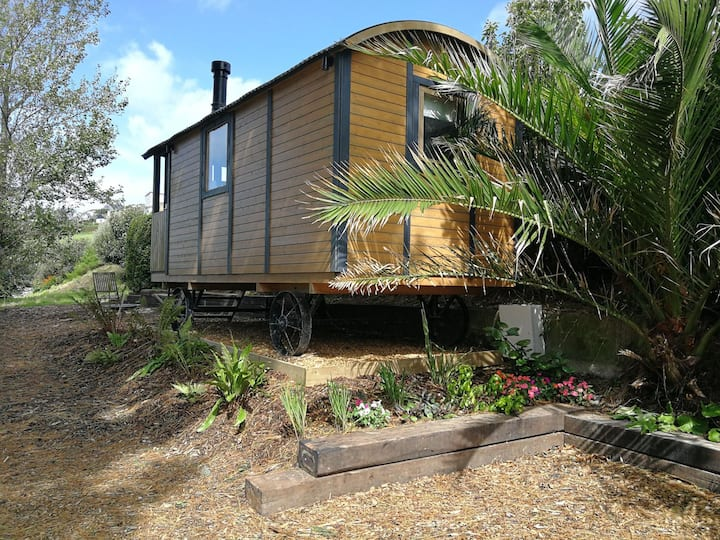Stargazing Shepherds Hut - Woolacombes hidden gem