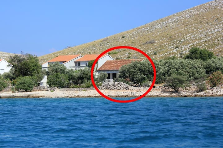 Two bedroom house near beach Suha Punta, Kornati (K-8168)