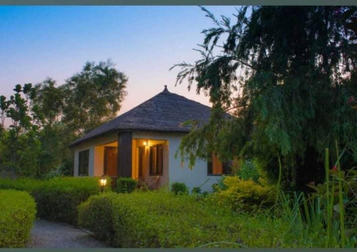 YOYO Vanasthali Resort Jim Corbett, Ramnagar