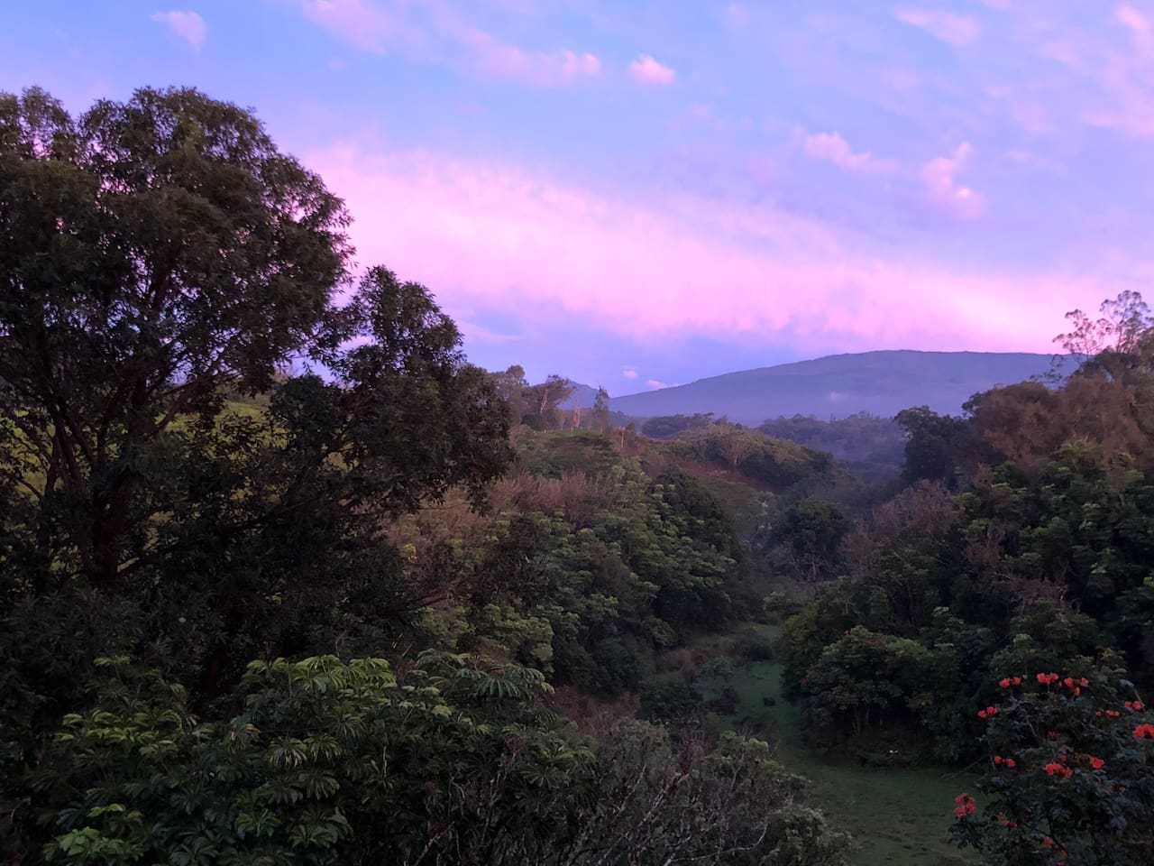 Sunrise from the bedroom window...or view it at top Haleakala.