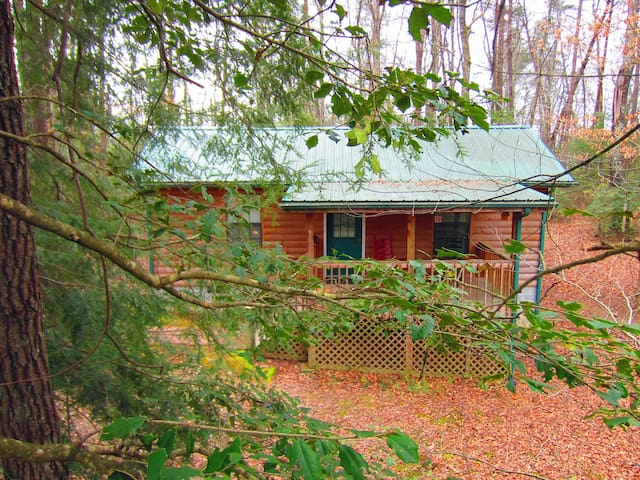 Private Plateau Log Cabin! 5 min from State Park