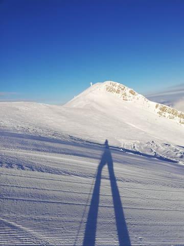 Monte Gomito / SCi