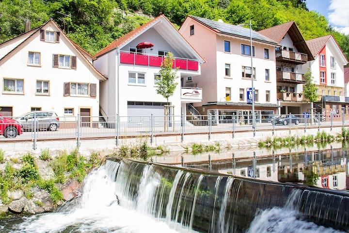 NEU Ferienwohnung Buchkopfblick, ideale Lage - Oppenau - Appartement