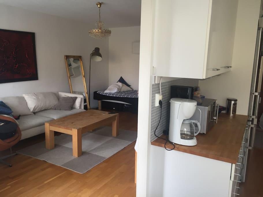 Kök och vardagsrum. Säng i vardagsrummet och soffa