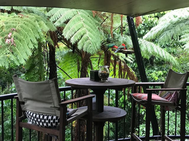 Buderim Whipbird Treehouse Homestay Private QRoom