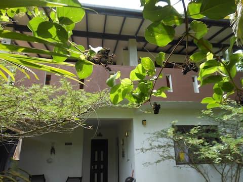 Rosevilla apartment
