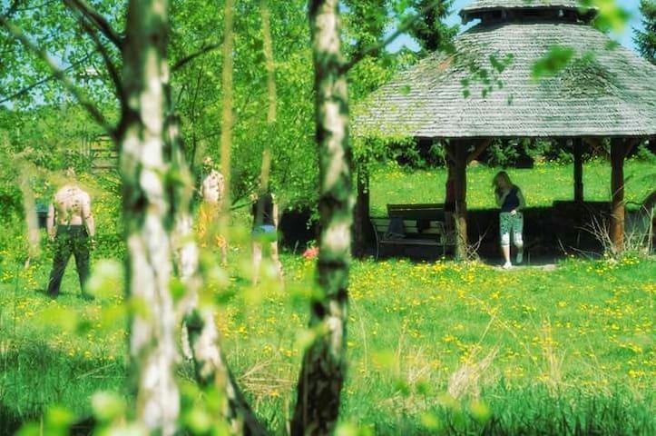 Pokoje na Kaszubach w drewniany dom - Nowa Wieś Przywidzka - Dom