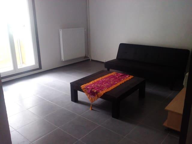 Joli appartement de 37m2 avec petite terrasse - Reims - Daire