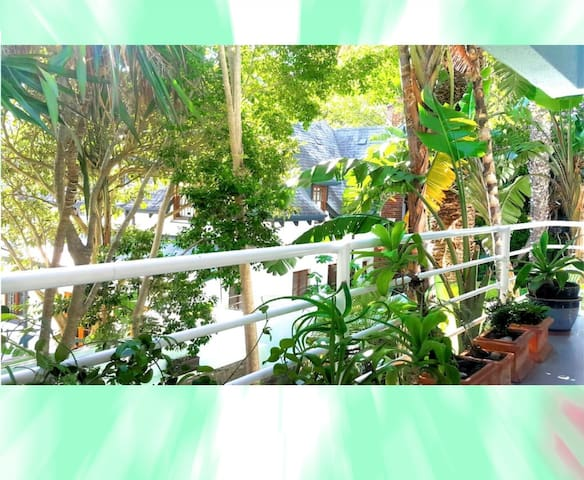 balcony view from deckchair - nestled in the jungle-like garden.