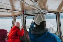 Round trip transportation aboard Shearwater Cove's exclusive water taxi is also included in the price of your stay.