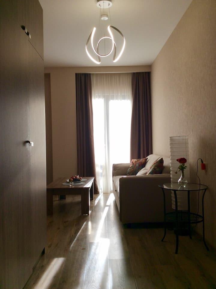 Апартаменты 410 A в Crystal resort Бакуриани
