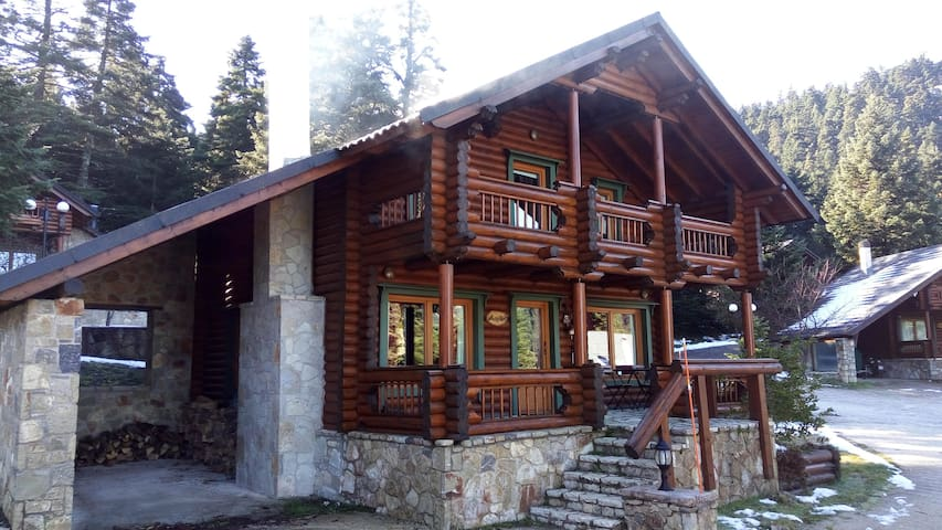 Beautiful wooden house in the forest Parnassos