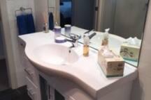 Downstairs bathroom vanity