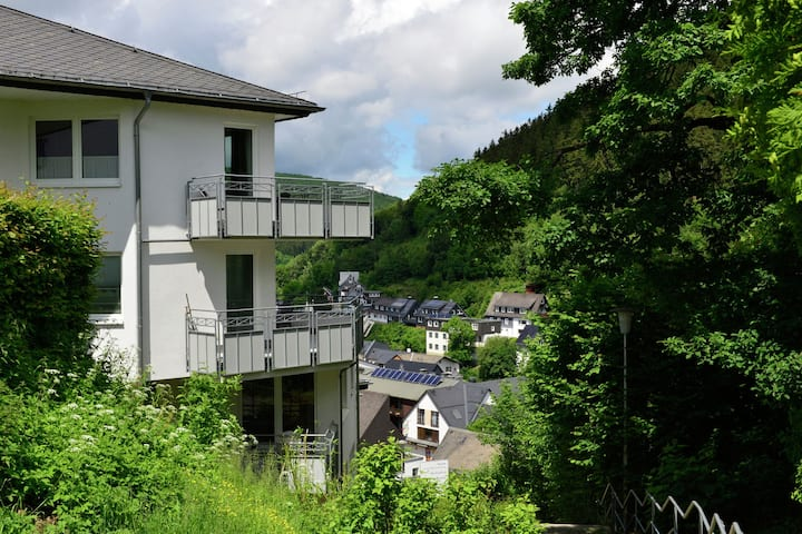 Modern Apartment in Willingen with Central Heating