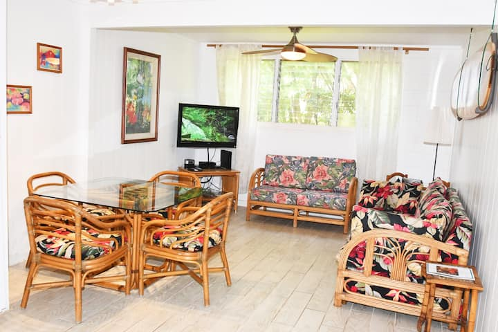 1 BR Island Style Vacation Condo on West Maui!